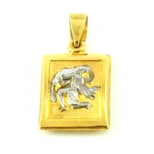 Χρυσό ζώδιο ''Υδροχόος''...